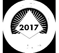 bronze pbis award logo