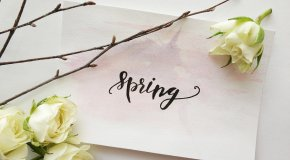 spring graphic with flowers